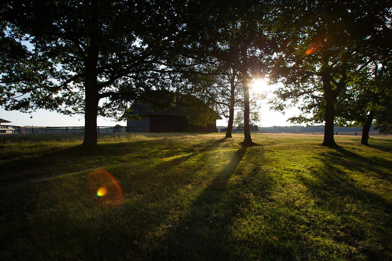 De Schaapskooi op de veluwe - Camping de Tesseplekke
